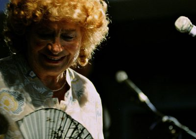 The Ballad Of Shirley Collins von Rob Curry und Tim Plester